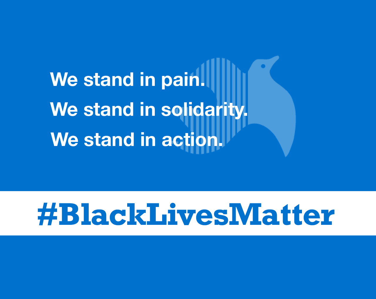 We stand in pain. We stand in solidarity. We stand in action.